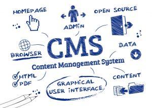 custom content management system